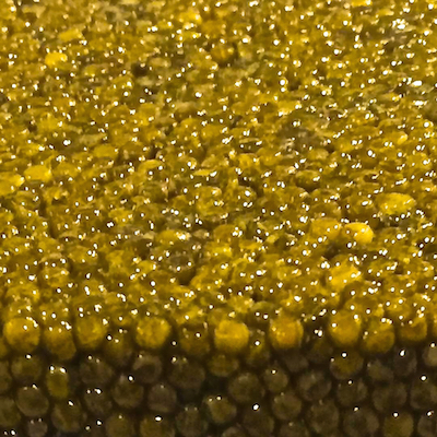 Beluga Caviar - (40g - 1.5oz)